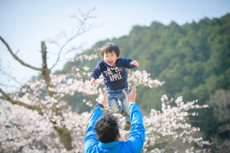 お客様の声をいただいた写真の一例(桜の木の前で父親に高く持ち上げられる子)