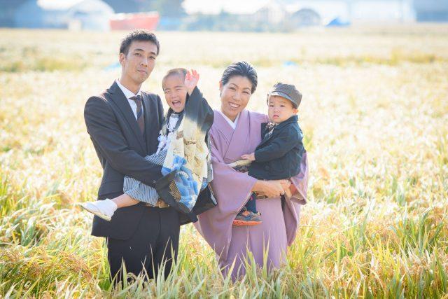 家族4人七五三記念写真稲穂の中で